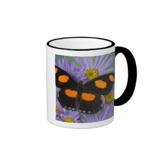 Sammamish Washington Photograph of Butterfly 15 Ringer Mug