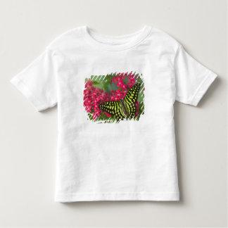 Sammamish Washington Photograph of Butterfly 16 T-shirts