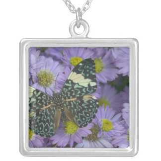 Sammamish Washington Photograph of Butterfly 19 Square Pendant Necklace