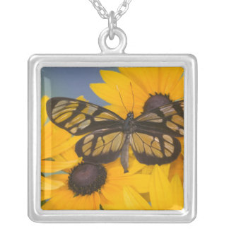 Sammamish Washington Photograph of Butterfly 24 Square Pendant Necklace