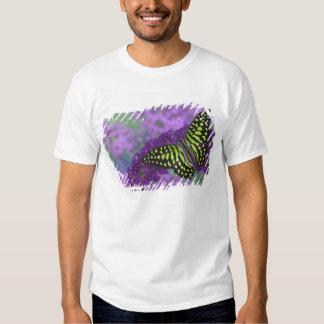 Sammamish Washington Photograph of Butterfly 31 T Shirt