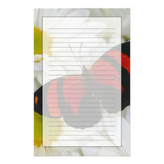 Sammamish Washington Photograph of Butterfly 51 Personalised Stationery