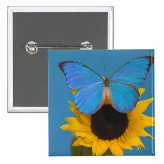 Sammamish Washington Photograph of Butterfly 57 15 Cm Square Badge