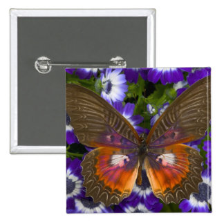 Sammamish Washington Photograph of Butterfly 8 15 Cm Square Badge
