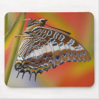 Sammamish, Washington. Tropical Butterflies 15 Mouse Pads