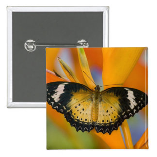Sammamish, Washington. Tropical Butterflies 18 15 Cm Square Badge