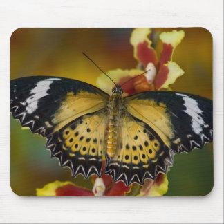 Sammamish, Washington. Tropical Butterflies 20 Mouse Pads