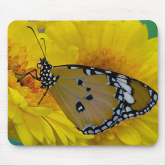 Sammamish, Washington. Tropical Butterflies 38 Mouse Pad