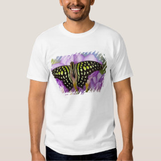 Sammamish, Washington. Tropical Butterflies 44 T Shirts