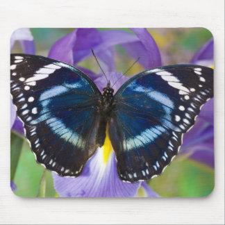 Sammamish, Washington. Tropical Butterflies 57 Mouse Pad