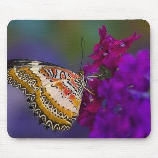 Sammamish, Washington. Tropical Butterflies 64 Mousepad