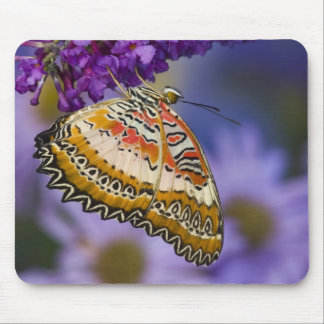 Sammamish Washington Tropical Butterflies 65 Mousepad