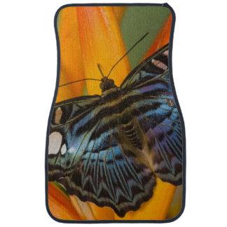 Sammamish, Washington Tropical Butterfly 24 Floor Mat