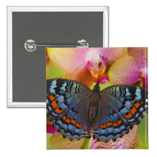 Sammamish Washington Tropical Butterfly 2 15 Cm Square Badge