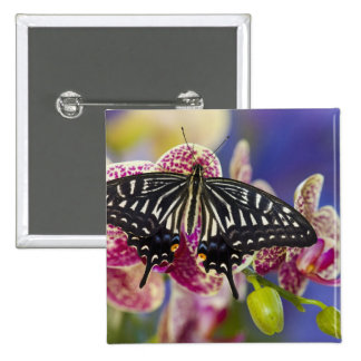 Sammamish, Washington Tropical Butterfly 43 15 Cm Square Badge