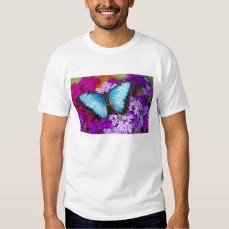 Sammamish Washington Tropical Butterfly 7 Tee Shirts