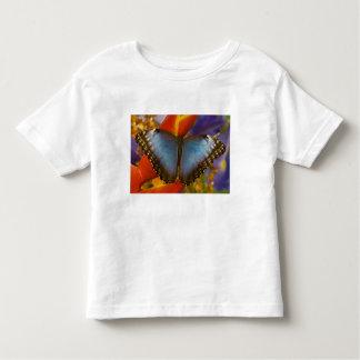 Sammamish Washington Tropical Butterfly 9 Tee Shirts