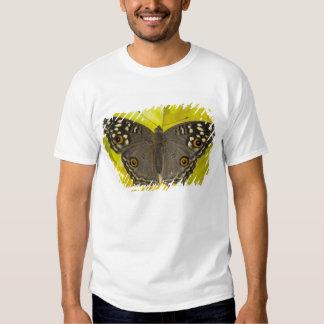 Sammamish Washington Tropical Butterfly Tee Shirts