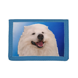 Samoyed Blue TriFold Nylon Wallet