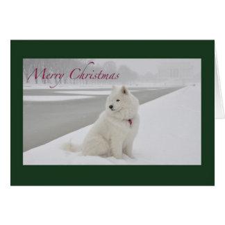 Samoyed Christmas (Lincoln Memorial) Card