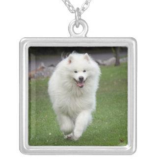 Samoyed dog necklace, gift idea square pendant necklace