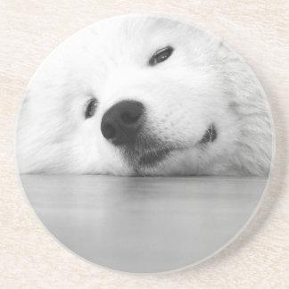 Samoyed Photo Dog White Drink Coaster