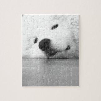 Samoyed Photo Dog White Puzzles