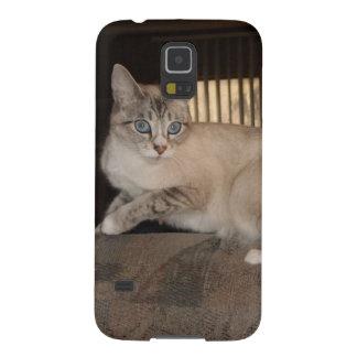 Samsung Galaxy Adorable Animal cases