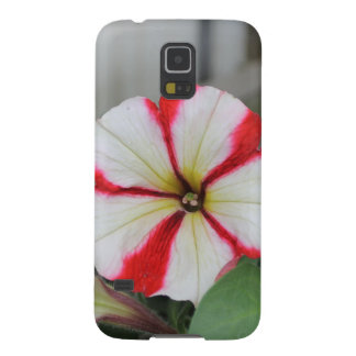 Samsung Galaxy S5 Case - red / white calibrachoa