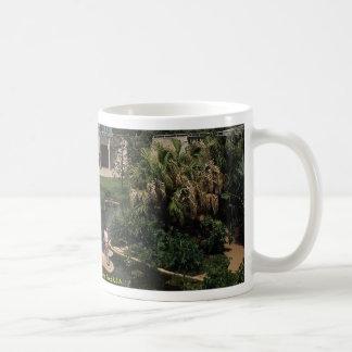 San Antonio Botanical Gardens, Texas, U.S.A. Coffee Mug