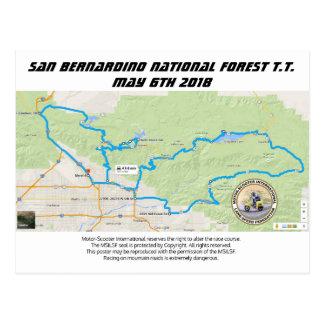 San Bernardino National Forest T.T. Postcard