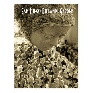 San Diego Botanic Garden Postcard
