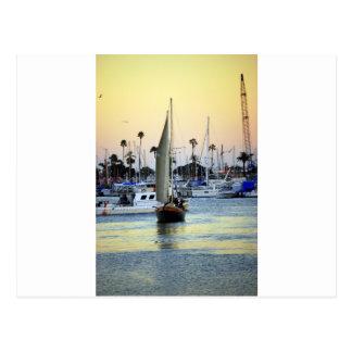 San Diego Harbor Marina Postcard
