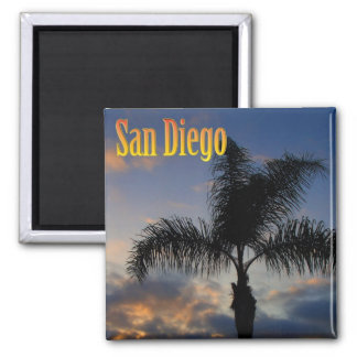 San Diego Palm Tree Magnet