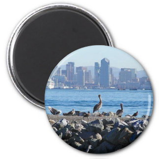 San Diego Pelicans Birds City Skyline Water Magnet
