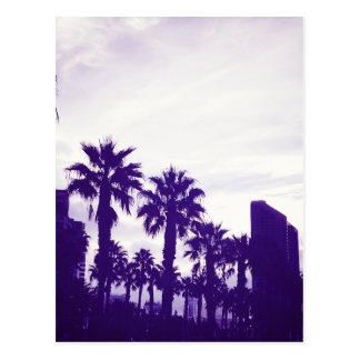 San Diego Purple Postcard