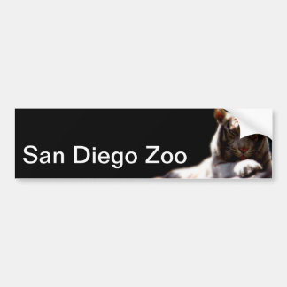San Diego Zoo Tiger Bumper Sticker