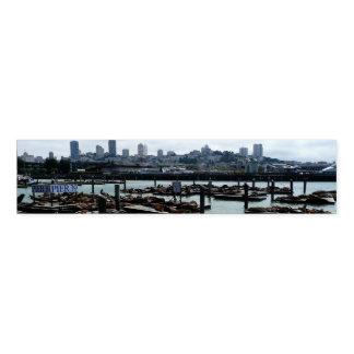 San Francisco and Pier 39 Sea Lions City Skyline Napkin Band