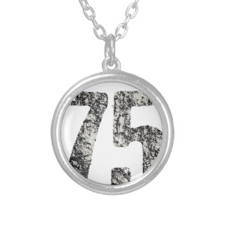 san francisco design silver plated necklace