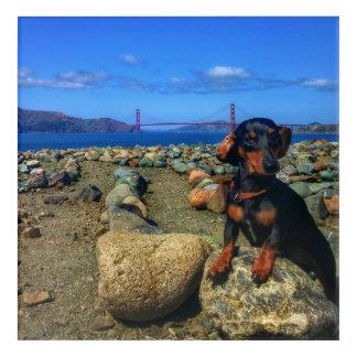 San Francisco Golden Gate Acrylic Wall Art