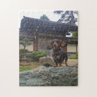 San Francisco Golden Gate Park Jigsaw Puzzle