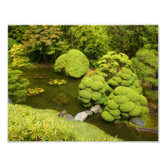 San Francisco Japanese Tea Garden Pond #6 Poster