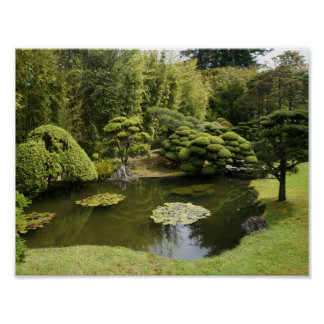 San Francisco Japanese Tea Garden Pond Poster