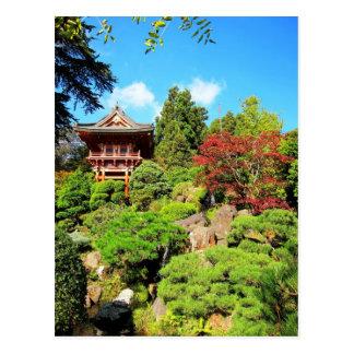 San Francisco Japanese Tea Gardens Postcard