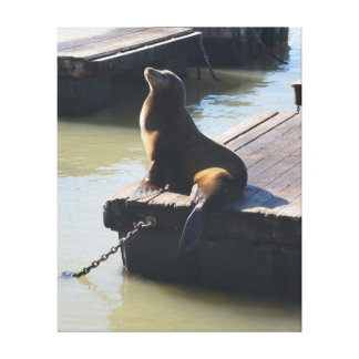 San Francisco Pier 39 Sea Lion #2 Canvas