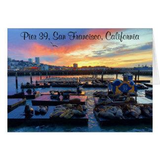 San Francisco Pier 39 Sea Lions #8-2 Card