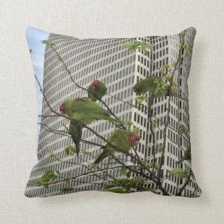 San Francisco Wild Parrots Cushion