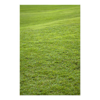 San Juan, Puerto Rico - Green grass is Photo