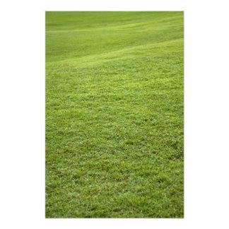 San Juan, Puerto Rico - Green grass is Photo Print