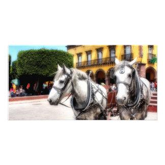 San Miguel de Allende, Photo Card